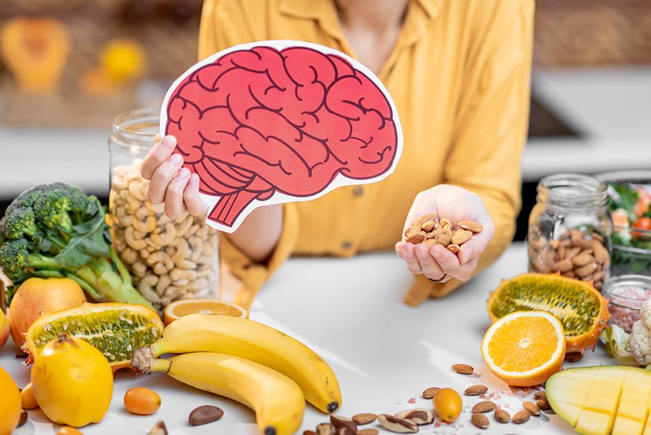 Nutrition et fonctionnement du cerveau