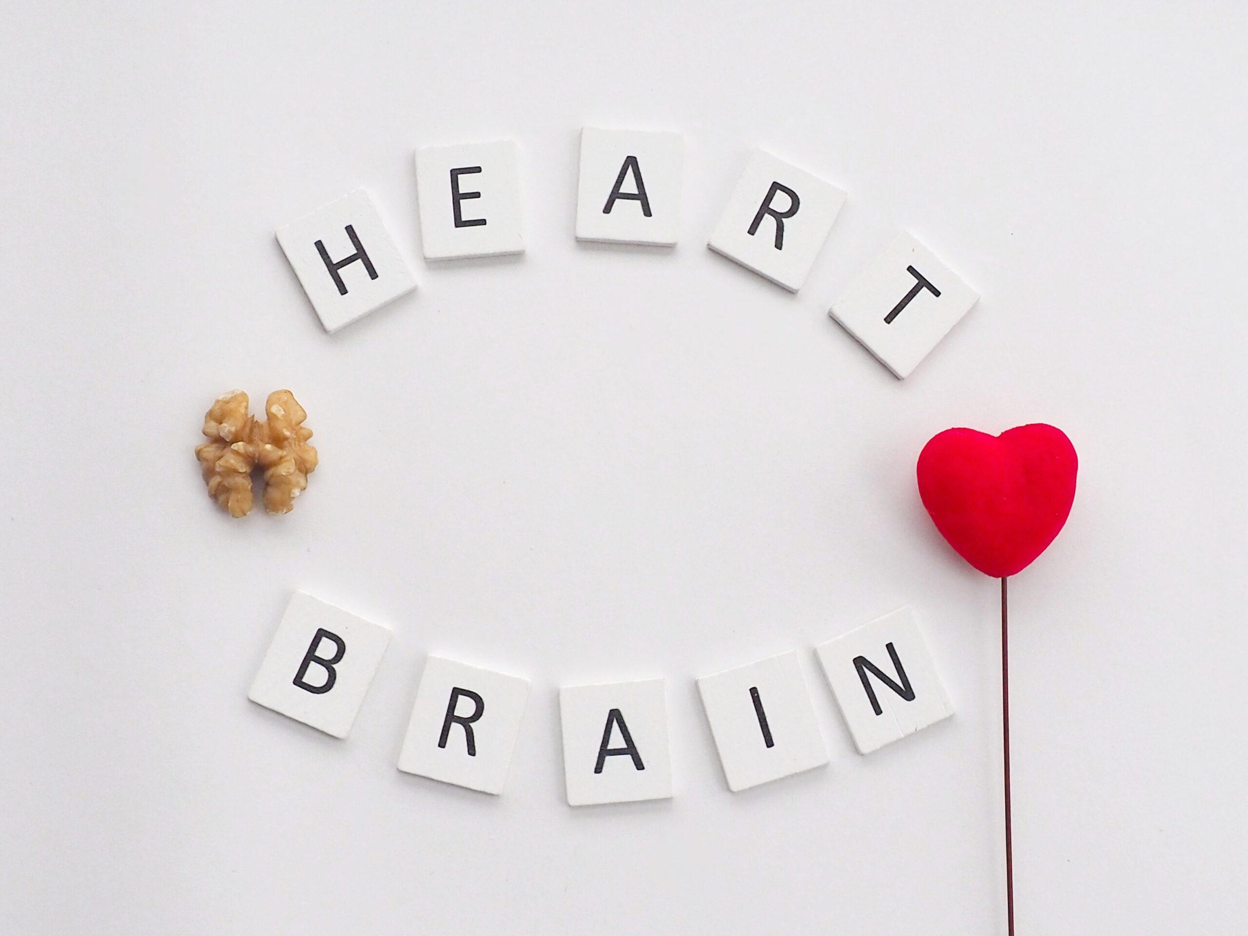 Cerebro sano: ¿qué puede hacer para mantener su salud cerebral?